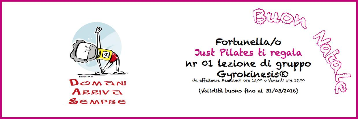 just pilates regali natale gyrokinesis